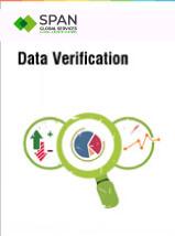 data verification process
