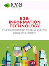 B2B Information Technology